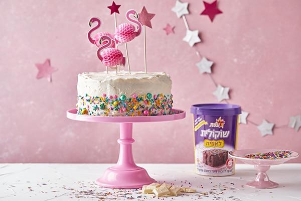 עוגת שוקולית חגיגית